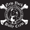 New York Bully Crew