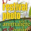 Festival Photo de Montier-en-Der