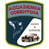 Accademia Cosentina Motori & Antichità