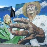 Santa Teresa y San Juan Detroit