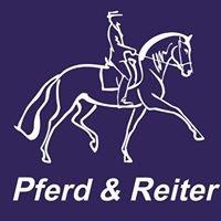 Pferd & Reiter Rügen