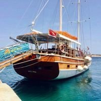 Oh Yeah Malta Cruises and water sports