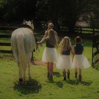 Grey Barn Farm