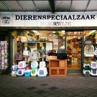 Dierenspeciaalzaak Moerwijk