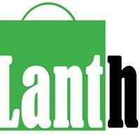 Tolgs Lanthandel