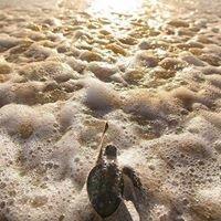 Triton Dive Charters and Lodge - Sodwana Bay