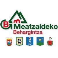 MEATZALDEKO BEHARGINTZA S.L.