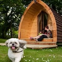 Teifi Valley Camping Pods