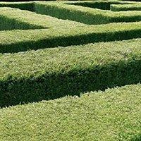 Ud Af Labyrinten
