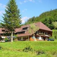 Akzent Hotel Lawine in Todtnau im Schwarzwald