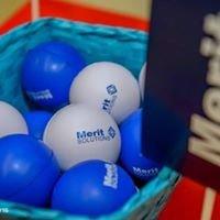 Merit Solutions Srbija