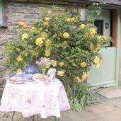 Penyrallt Fach Cottage
