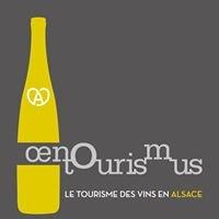 Oenotourismus Alsace - Segway dans le vignoble