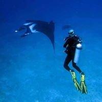 Oktavia Dive Center