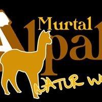 Murtal-Alpaka