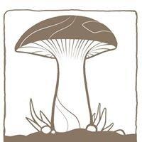 Waldviertler Pilzgarten