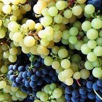 Hedegårdens vinavl
