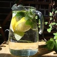 Trinkwasserberatung Karl Riedler