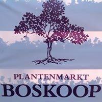 Plantenmarkt Boskoop
