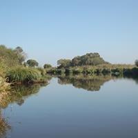 Parc naturel régional de Brière