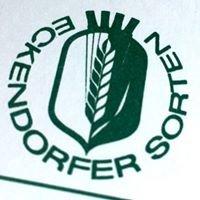 W. von Borries-Eckendorf GmbH & Co. KG