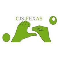 CJS-FEXAS