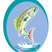 Pêche Haut verdon
