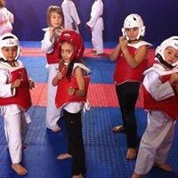 ustt taekwondo toulon
