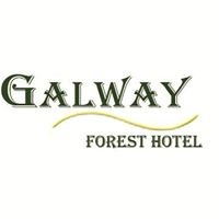 Galway Forest Hotel