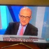 Antonio Sancho Consultor SL
