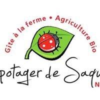Le potager de Saquier Nice