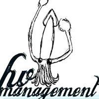 Hv Management