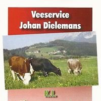 Veeservice Johan Dielemans