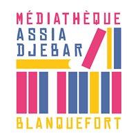 Médiathèque Assia Djebar