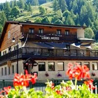 Gîte Hautes Alpes: Gîte Edelweiss