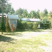 Campingplatz Holm