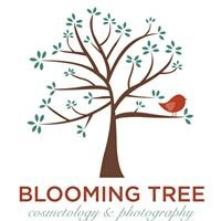 Blooming Tree Photography