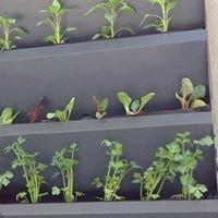 Zeleni inovatorji
