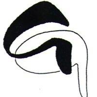 Kamerkoor Giocoso