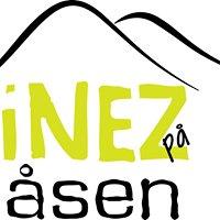 INEZ på Åsen