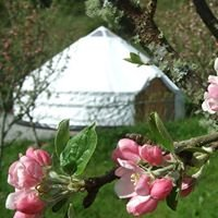 Pink Apple Orchard - Yurt Glamping Holidays