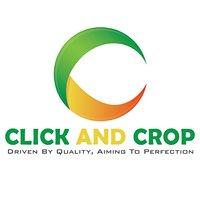 Click and Crop