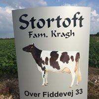 Stortoft Holstein