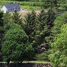 Hazelwood Holiday Home