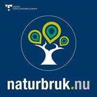 Naturbruksskolan Svenljunga