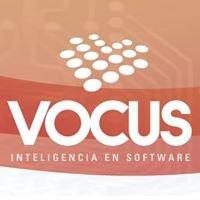 VOCUS - Inteligencia en Software
