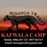 Kafwala Camp - Busanga Trails