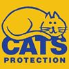 Cats Protection Ferndown