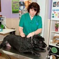 Naturevet- Medicina Natural para su mascota