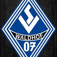 SV Waldhof Mannheim 07 Abteilung Handball